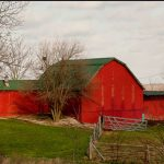 Red Barn or Grey?