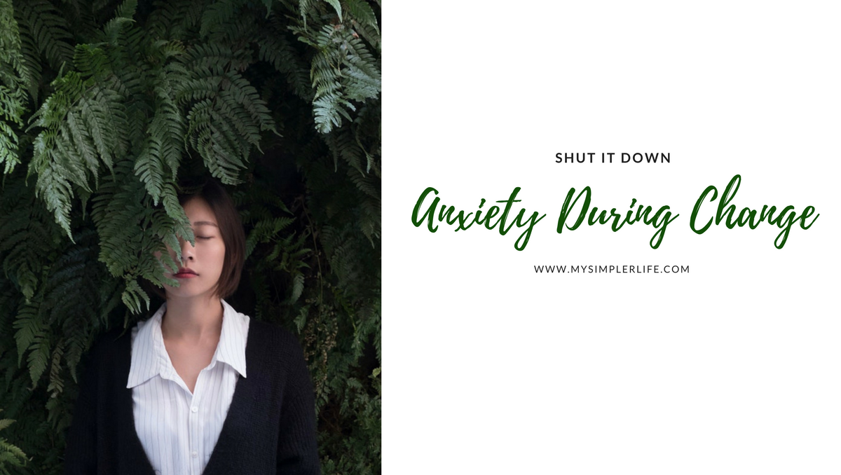Shut it Down – Anxiety in Change