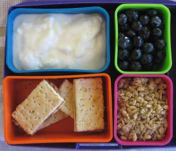 Yogurt and blueberries bento lunch
